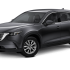 Mazda CX-9 o similar (Pta. Arenas)